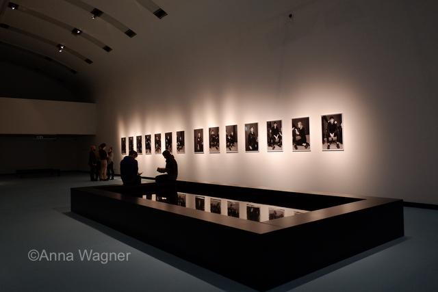 ANTARCTICA -Ausstellung im MQ