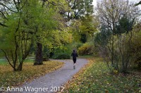 jogger in the park of Schoenbrunn