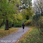 jogger in the park of Schoenbrunn